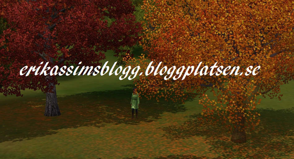 erikassimsblogg